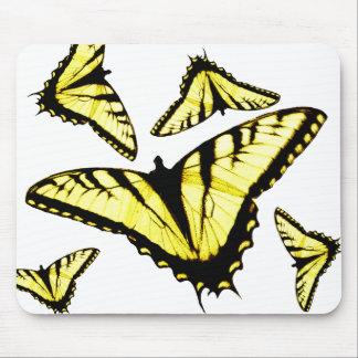 Foto del este de la mariposa de Swallowtail del ti Tapetes De Raton