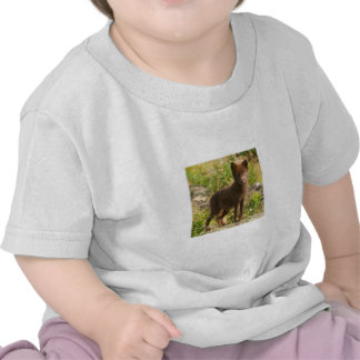 Foto del Fox ártico Camiseta