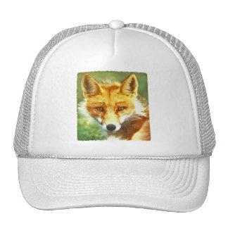Foto del Fox rojo Gorros Bordados