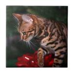 Foto del gatito del navidad (gato nacional de Beng Teja Cerámica