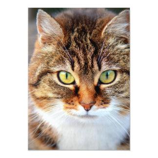 Foto del gato invitaciones personalizada