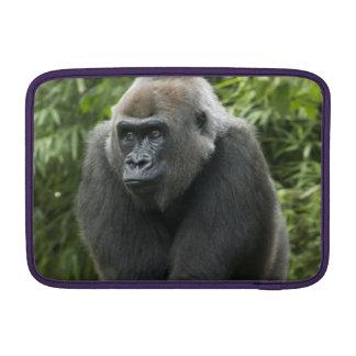 Foto del gorila funda  MacBook