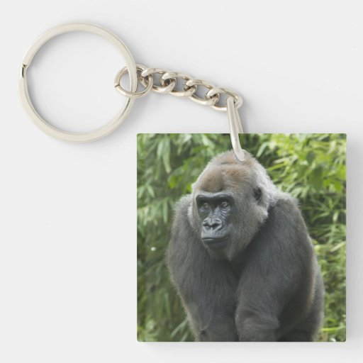 Foto del gorila llaveros