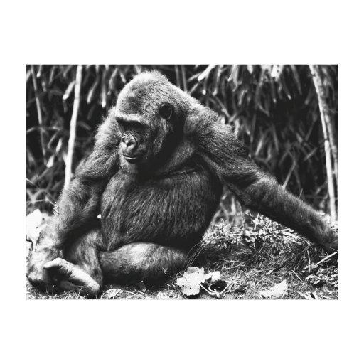 Foto del gorila que se sienta en negro y blanco lona estirada galerias