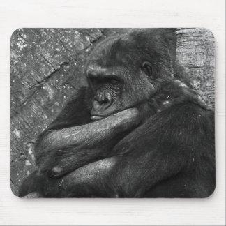 Foto del gorila alfombrilla de ratón