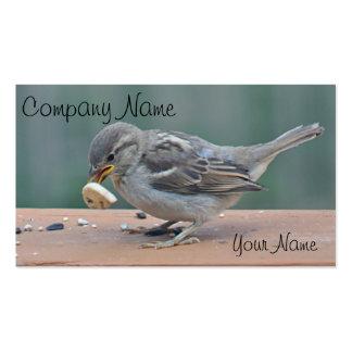 Foto del gorrión tarjetas de visita