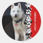 Foto del husky siberiano pegatinas redondas