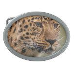 Foto del leopardo hebillas de cinturon
