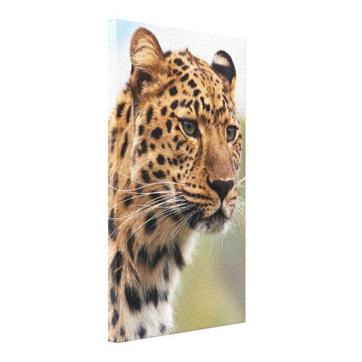 Foto del leopardo impresión de lienzo