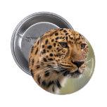 Foto del leopardo pins