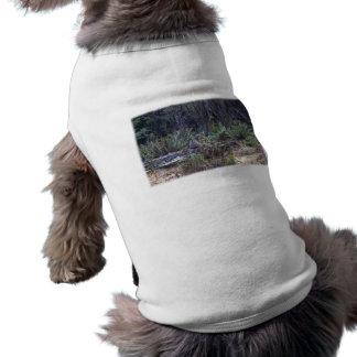 Foto del lince camisetas de perro