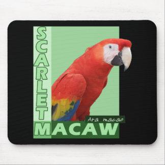 Foto del Macaw del escarlata Tapetes De Raton