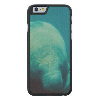 Foto del Manatee Funda De iPhone 6 Carved® De Arce