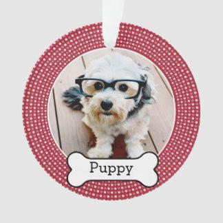 Foto del mascota con el hueso de perro - el doble