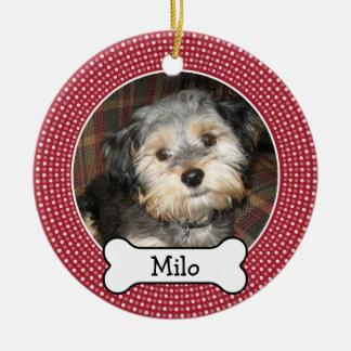 Foto del mascota con el hueso de perro - el doble  ornamento para reyes magos