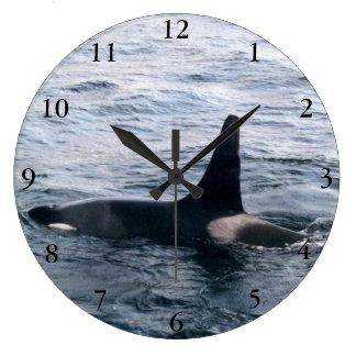 Foto del océano de la ballena de la orca de Alaska Reloj Redondo Grande