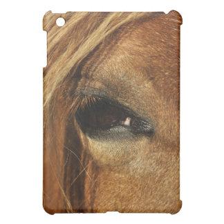 Foto del ojo del caballo