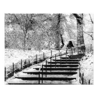 Foto del paisaje de la nieve del invierno del fotografías