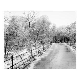 Foto del paisaje de la nieve del invierno del