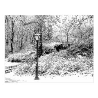 Foto del paisaje de la nieve del invierno del postal