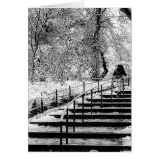 Foto del paisaje de la nieve del invierno del tarjetón