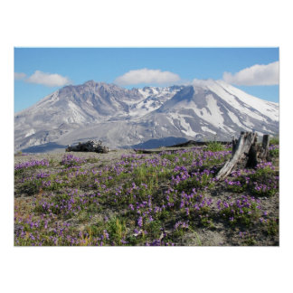 Foto del paisaje de la primavera del Monte Saint Póster