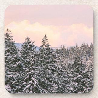 Foto del paisaje de los árboles Nevado Posavaso