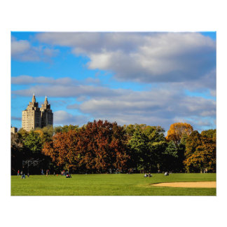 Foto del paisaje del Central Park