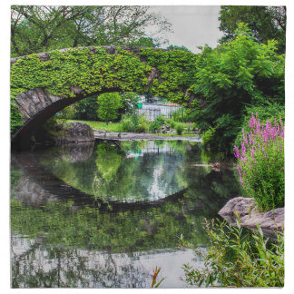 Foto del paisaje del Central Park Servilleta Imprimida