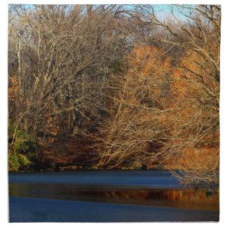 Foto del paisaje del Central Park Servilletas Imprimidas