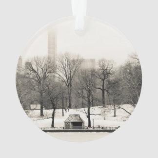 Foto del paisaje del invierno del Central Park
