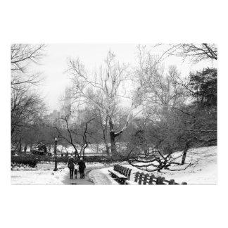 Foto del paisaje del invierno del Central Park Cojinete