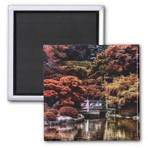Foto del paisaje del otoño de la caída del parque iman de nevera
