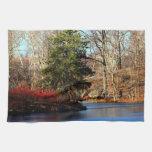 Foto del paisaje del otoño del Central Park Toallas De Mano