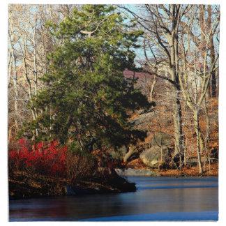 Foto del paisaje del otoño del Central Park Servilleta