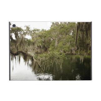 Foto del parque de estado de la naturaleza el Bl iPad Mini Protectores
