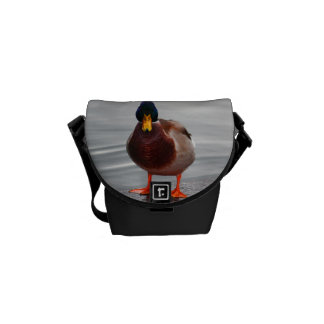 Foto del pato del pato silvestre bolsa de mensajería