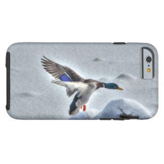 Foto del pato del pato silvestre del aterrizaje y funda de iPhone 6 tough