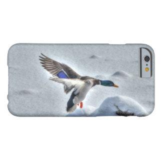 Foto del pato del pato silvestre del aterrizaje y funda de iPhone 6 barely there