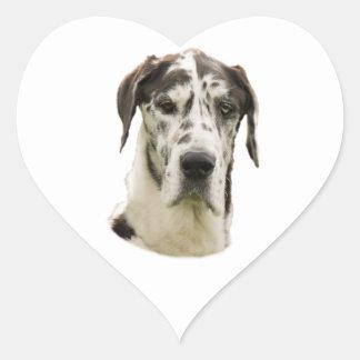 Foto del perro de great dane del Harlequin Pegatina En Forma De Corazón