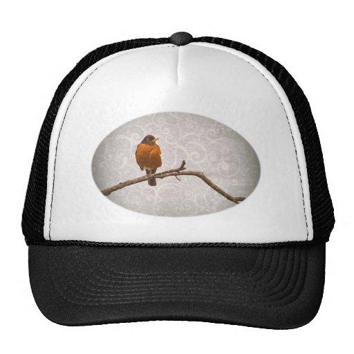 Foto del petirrojo con diseño del remolino del dam gorra