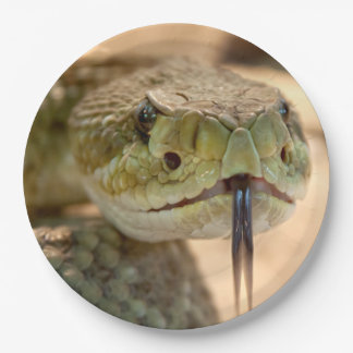 Foto del primer de la serpiente de cascabel platos de papel