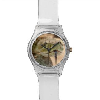 Foto del primer de la serpiente de cascabel relojes