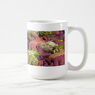 Foto del primer de las estrellas de mar taza de café