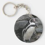 Foto del primer del pingüino de Humboldt Llavero