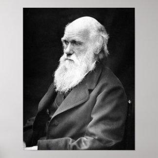 Foto del retrato de Charles Darwin Póster