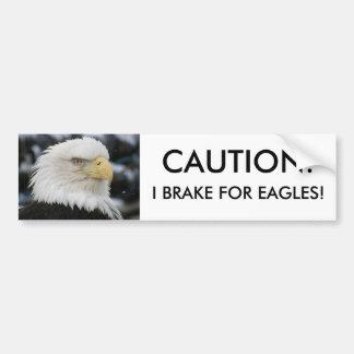 Foto del retrato de Eagle calvo Etiqueta De Parachoque