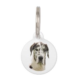 Foto del retrato de Halequin great dane Placas Para Mascotas