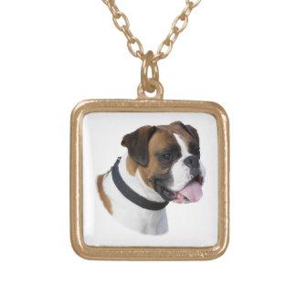 Foto del retrato del perro del boxeador collar dorado