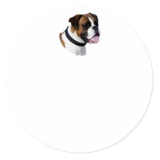 Foto del retrato del perro del boxeador invitación 13,3 cm x 13,3cm